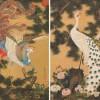 伊藤若冲「孔雀鳳凰図」発見された鳳凰と孔雀の絵の技法の謎